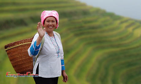 Ethnic Woman at Guilin Longji Rice Terraced Field