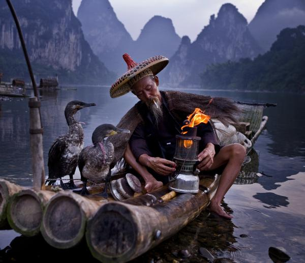 Cormorant Fishing in China