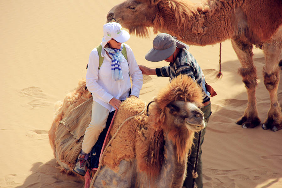 camel riding at desert