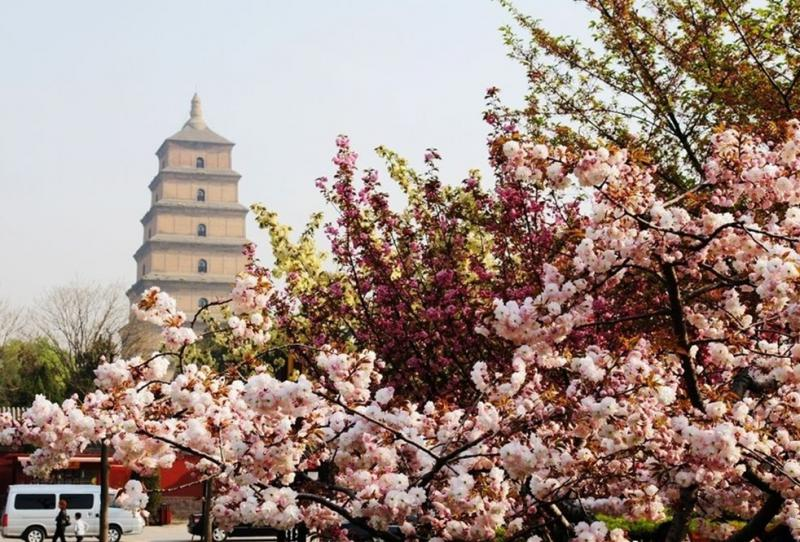Xian attractions - Big wild goose pagoda