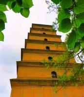 Big Wild Goose Pagoda with Green Leaves