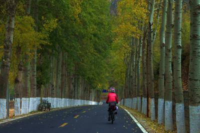 Beijing Suburb Biking Tours