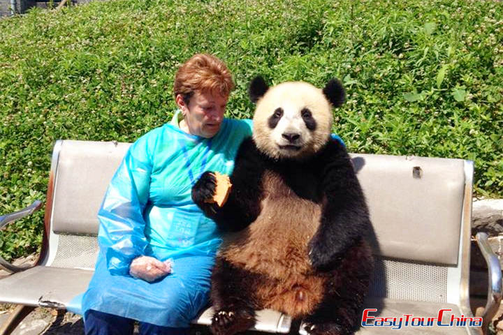Hug Panda at Chengdu Panda Base