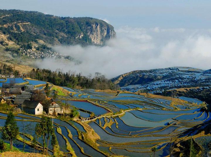 Yuanyang Rice Terraces Yuanyang Yunnan Province Yuanyang