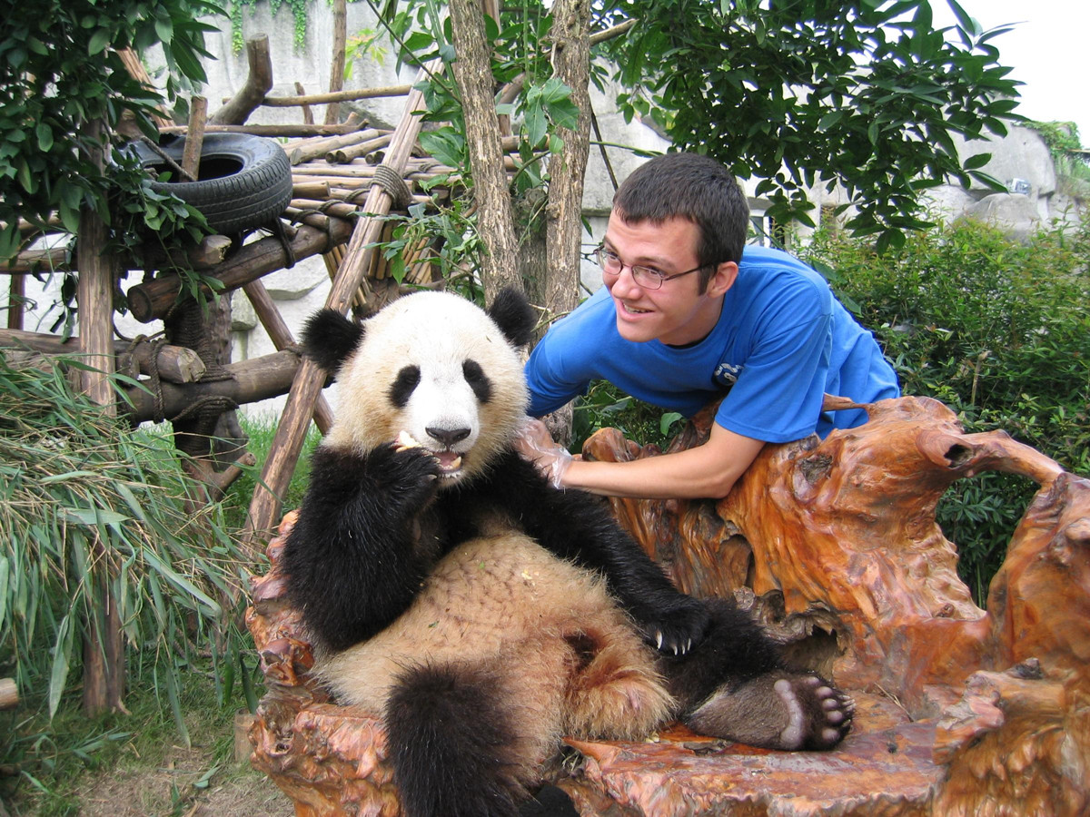 Take Photo with Giant Panda
