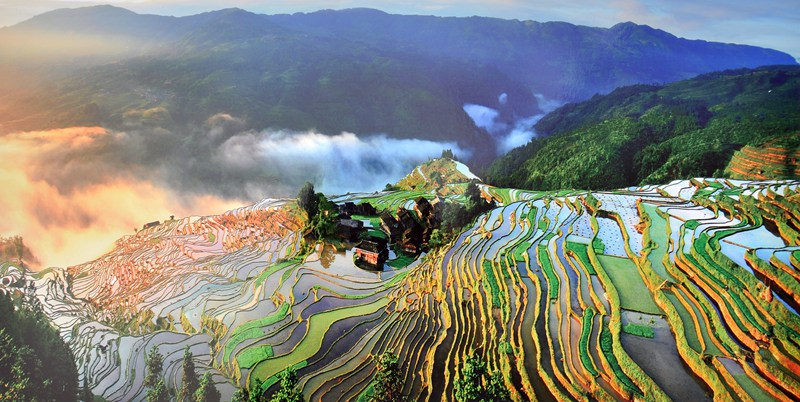 Jiabang Rice Terraces in China