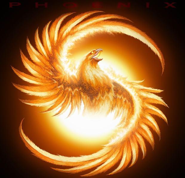 Chinese Phoenix Chinese Phoenix Images Chinese Phoenix