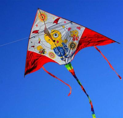 Flying Chinese Kite