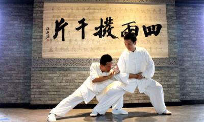 Tai Chi Flighting Movements