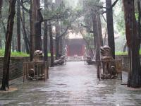 Confucius Cemetery Sight