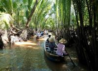 Mekong cruise through water coconut trees