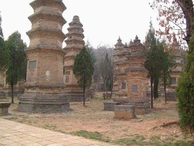 A Forest of Pagoda