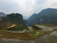 Rice Terrace Near Heaven Asking Platform