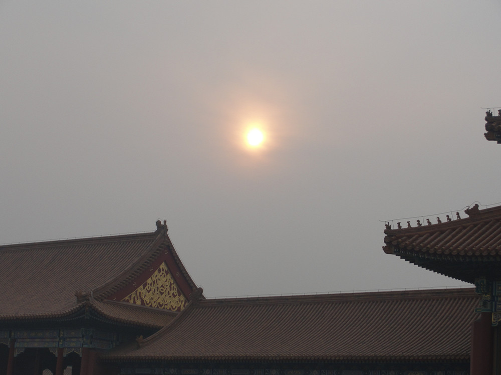 Palace Museum under the Sun