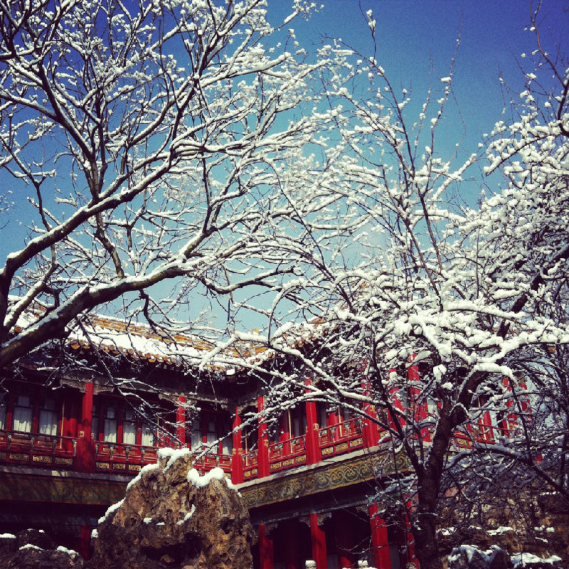 Forbidden City Palace in winter Day