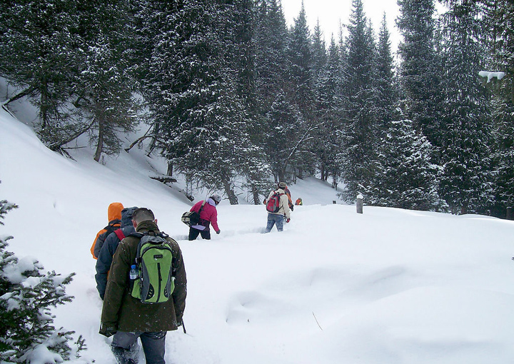 Visitors Walking in Snow