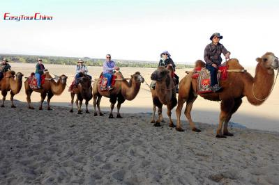 Wei and Clients Ride Camel in Singing Sand Mountains