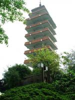 Goose Neck Park Tower