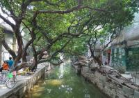 Guangzhou Xiaozhou Village Tour, Ancient Lingnan Water Village Tour in Guangzhou