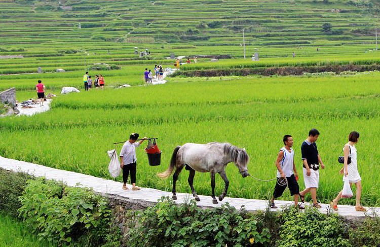 South China's Rural Area