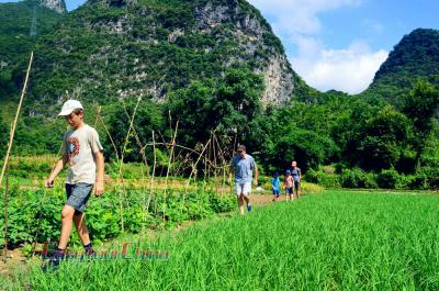 Family Walking Tour in Yangshuo Countryside