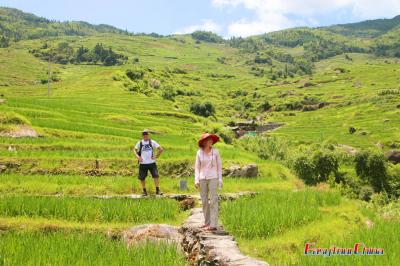 Visiting Guilin Longji Rice Terraced Fields