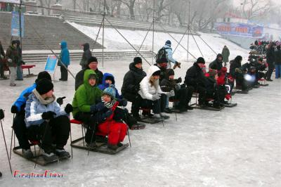 Go sledging with Kids