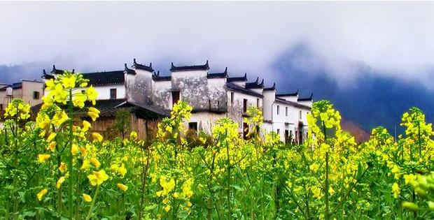 Hongcun and Xidi Village View
