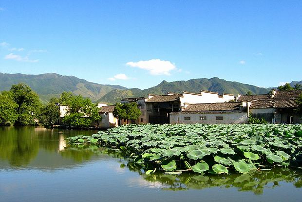 Hongcun and Xidi Village Lotus Lake