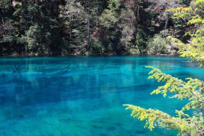 Jiuzhaigou Blue Lake
