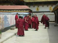 monks in jokhang temple