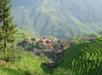 Longji Rice Terraces View