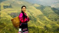 Hiking at Longji to see rice terraces and minority culture