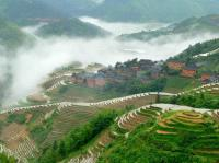 longji rice terraced fields