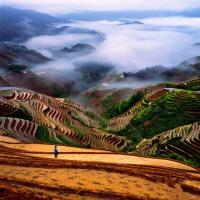 Awesome Longji Terraced Fields in the Mist