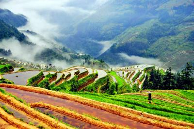 Breathtaking Longji Rice Terraces Landscape