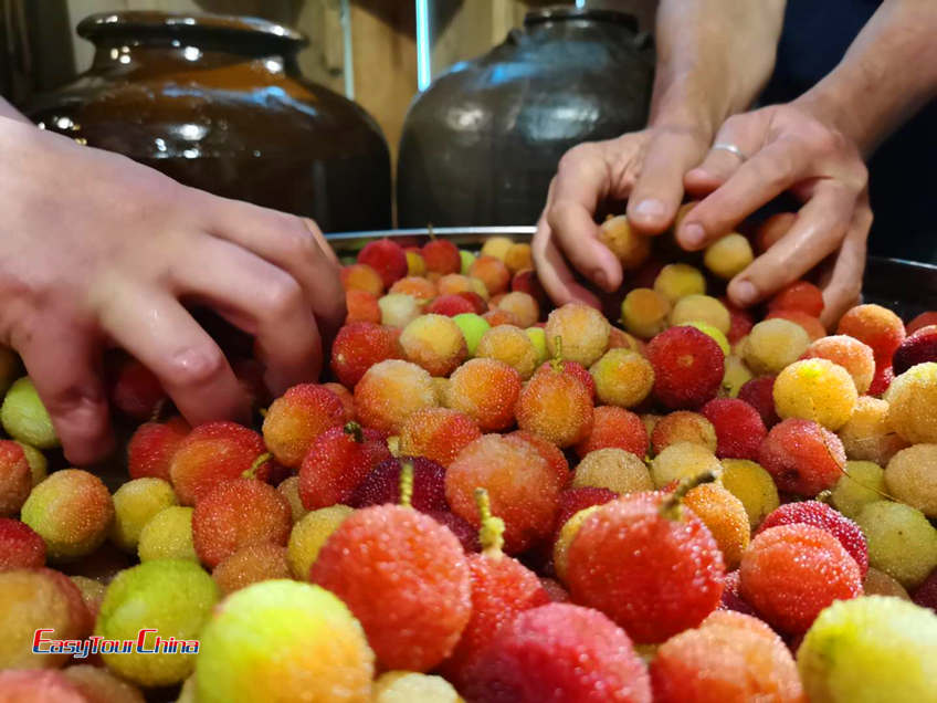 Sour plums prepared to make wine