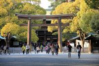 Meiji Jingu Shrine Scenery