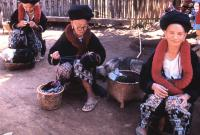 Women Sewing in Meo Hill Tribe Village