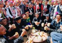 Travel Photos of Hani Minority Elder People Toasting