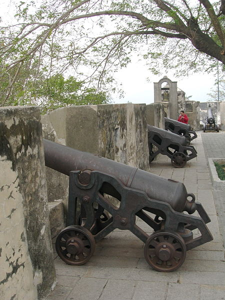 Mount Fortress Cannons on Wall
