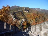 Mutianyu Great Wall in Autumn
