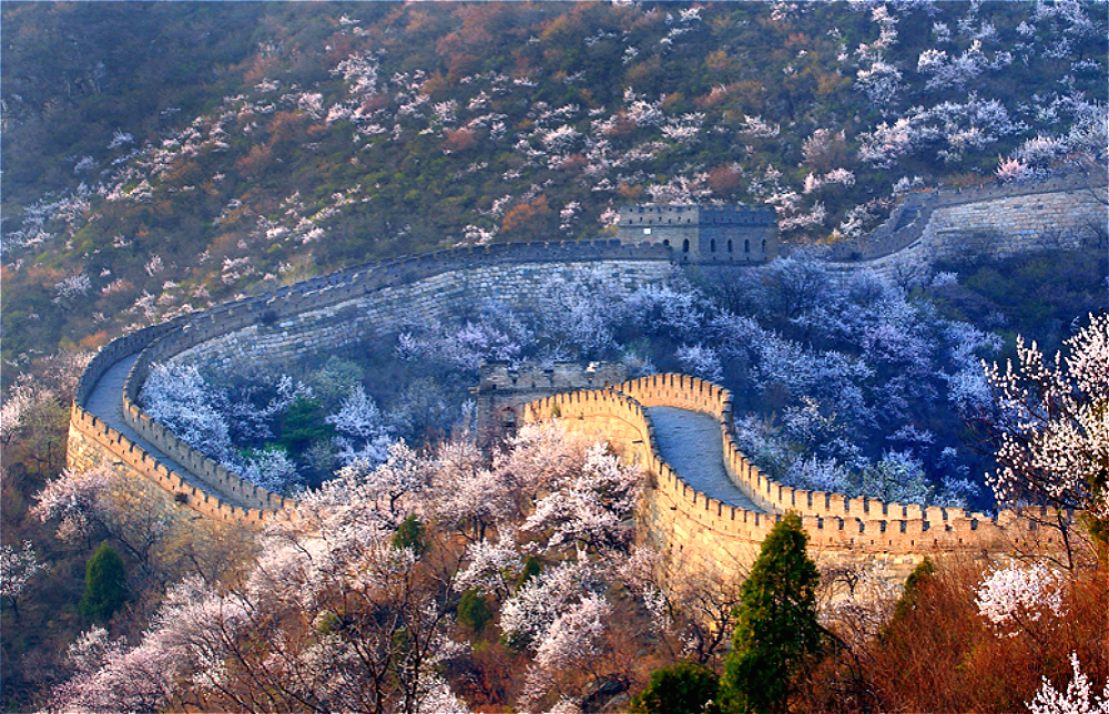 Mutianyu Great Wall with Flowers