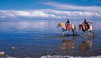 Namtso Lake Riding Horses