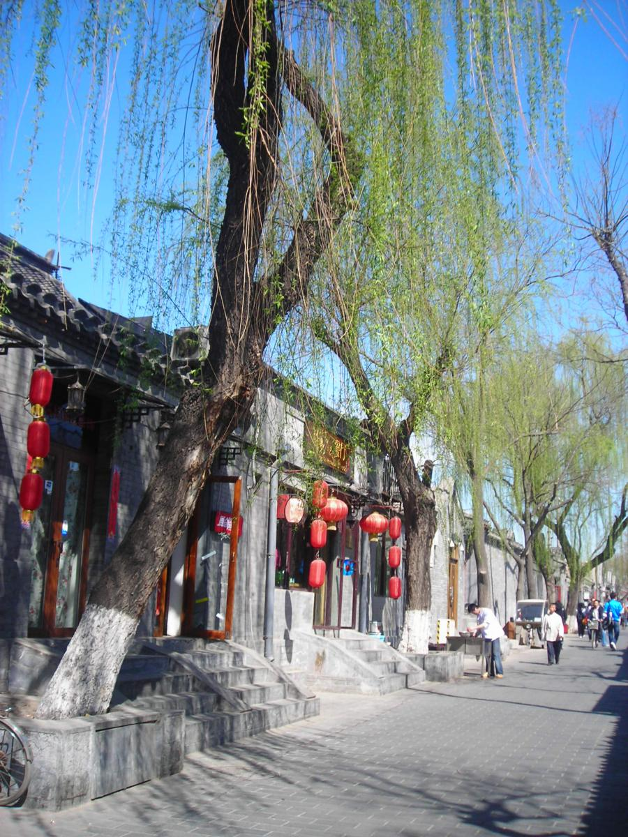 Vivid Nanluoguxiang in Spring