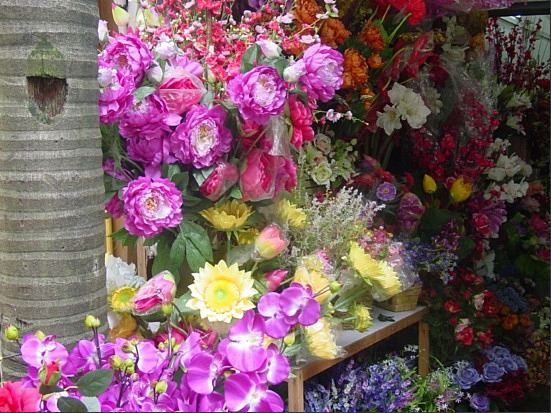 Nanning Bird and Flower Market Flowers