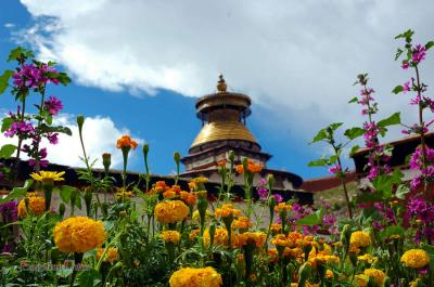 Palkhor Monastery with Flowers in Summer