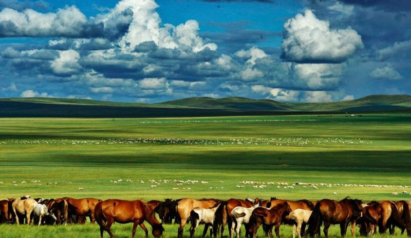 Photography Trip to Hulunbuir Prairie, Inner Mongolia ...