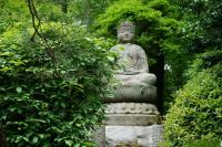 Buddha Statue at Ryoanji Temple