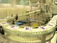Automatic Japanese Tofu Production Line